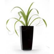 Samozavlažovací kvetináč G21 Linea mini čierny 14cm